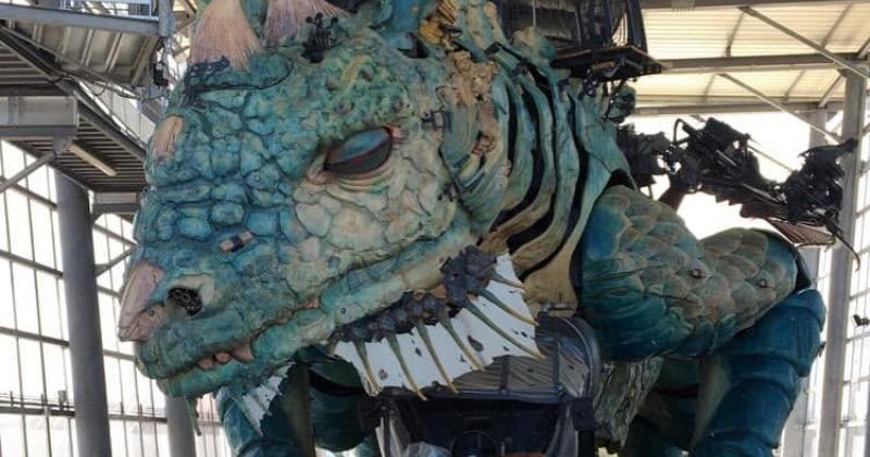 visite entretien dragon de calais